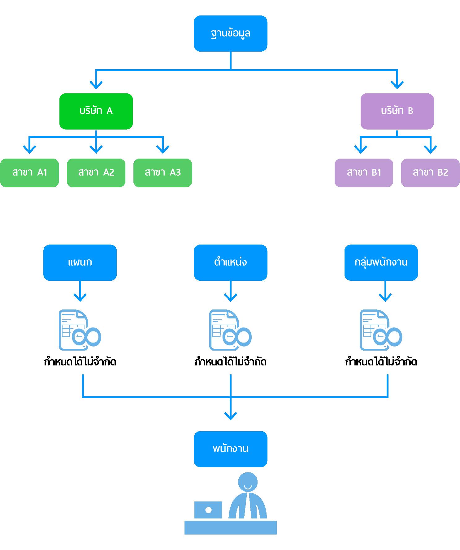 ระบบจัดการโครงสร้างข้อมูลองค์กร